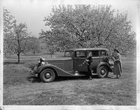 1934 Packard sedan, left side view, apple trees in background