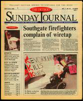 The Detroit Sunday Journal:: June 23-29, 1996