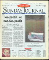 The Detroit Sunday Journal:: October 27 - November 2, 1996
