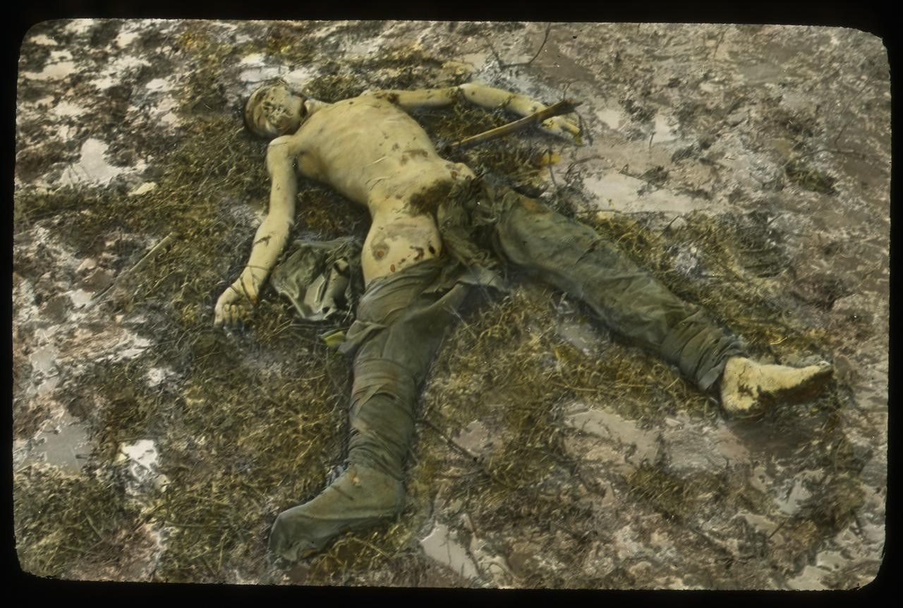 Decomposing and Mostly Naked Dead Soldier in a Field - Wayne State University Digital Collections