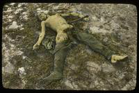 Decomposing and Mostly Naked Dead Soldier in a Field