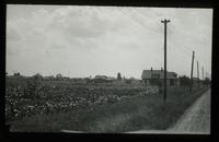 View of a Rural/Farming Neighborhood in Saginaw, Michigan