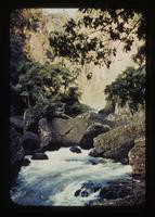 View of a Stream, Rocks, and Trees