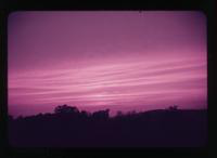 View of the sky with a Purple Hue