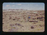 View of Dennis Cooper and a Friend in the Painted Desert