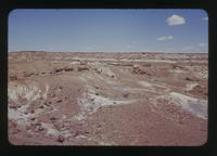 View of Man in the Distance at the Painted Desert