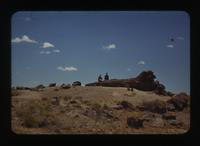 View of Dennis Cooper and Friend at the Petrified Forest
