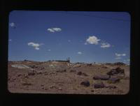 View of Two People in the Petrified Forest