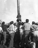 A man climbs a pole in the Frosh-Soph Games at Belle Isle in the 1920s.