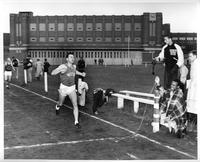 A Wayne track athlete about to cross the finish line, not first, at a meet in front of Redford High School.
