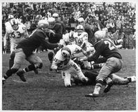 Charles Coss, 150-pound Bethany Quaterback, is brought down after a short gain against Wayne State in the Tartar's Novenmer 17, 1962 Homecoming game at Tartar Field in Detroit.