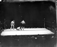 Boxing Matches; King Tut Kockouts; Billy Towsen & Henry Tuttle