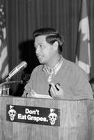 Chavez, Cesar; United Farm Workers Union.