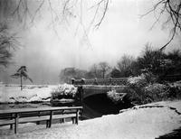Belle Isle Winter scenes. Scenes taken after Snowstorm Dec. 1, 1927