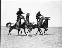 Police . Mounted Division Roman Riders 1932 men standing on 2 horse at once.