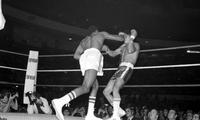 Thomas Hearns; Boxers; Bouts. Vs. Pedro Rojas .
