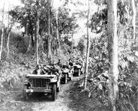 Wars; World; # 2; United States Army; In New Guinea. Jeep going thru jungle