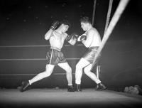 Boxing; Matches; Adamick vs Ettore.