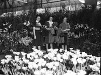 flowers; shows. Detroit. date is 1940