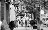 Michigan; Cities; Grosse Pointe. Grosse Pointe on the Hill. (shopping area)