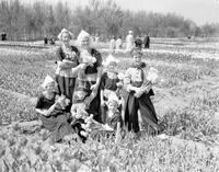 Michigan; Cities; Holland. Tulip Festival. Date is 1936