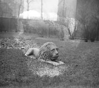 old Detroit; residences. Iron birds & animals in yard. dog & lion at the Farrand Residence.
