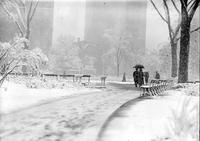 Parks - Grand Circus Park - Winter Scenes - Snow Storm, May 1923