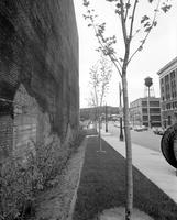 Streets; Washington Blvd. showing trees & new sides on Bldg. date is 1959