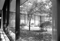 Yamasaki, Minoru; Detroit Architect. 4x5