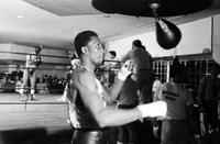 Thomas, Hearns; Boxer; Groups. with Emanuel Steward, Trainer Manager .