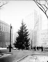 Christmas Scenes. Christmas Tree. Grand Circus Park. Day & Night scenes. 5 negs.
