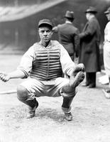 Guiliani, Angelo. Baseball. St. Louis Catcher