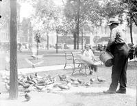 parks; Grand Circus Park. summer scenes. people on benches. pigeons. children bathing